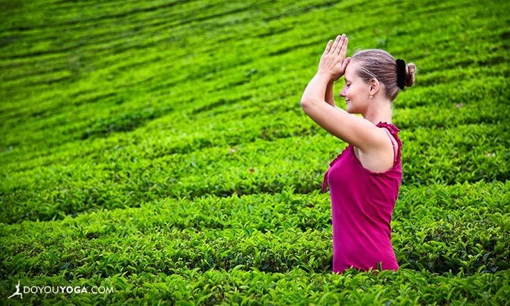 3 Reasons Why You Should Try Tea Detox