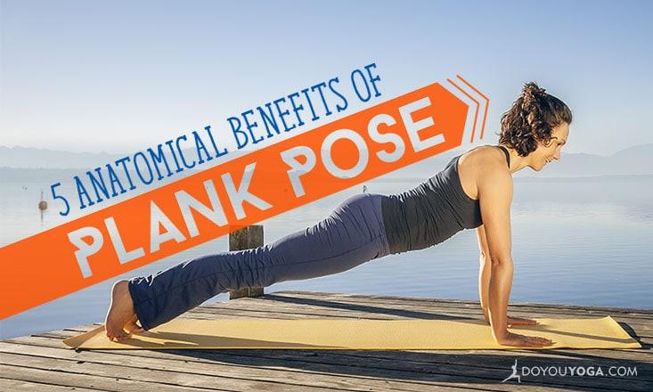 5 Anatomical Benefits of Plank Pose