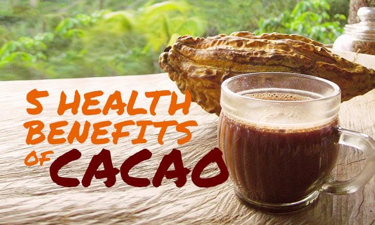 5 Health Benefits of Organic Cacao Nibs