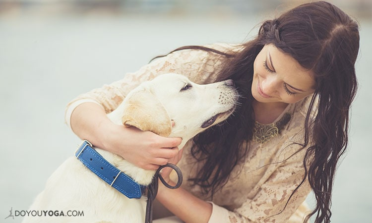 5 Life Lessons From My Four-Legged Friends At The Animal Shelter