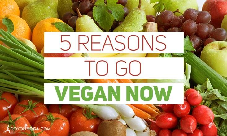 5 Reasons to Go Vegan Now