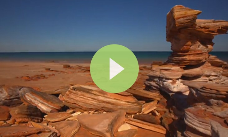 A 90-Second Visual Guide to Breathing With the Tide (VIDEO)