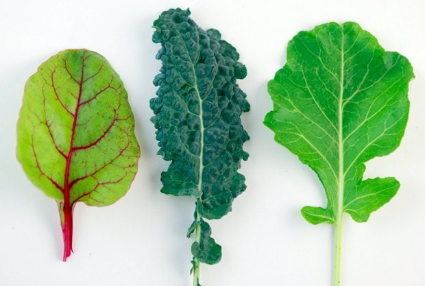 Dark Leafy Greens – Your New Daily Super Food