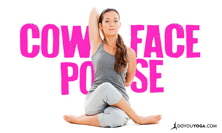 How to Build a Sequence Around Cow Face Pose