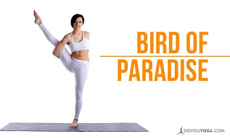 How to Do Svarga Dvijasana: Bird of Paradise Pose