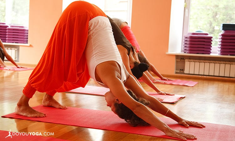 What Is Your Yoga Niche?