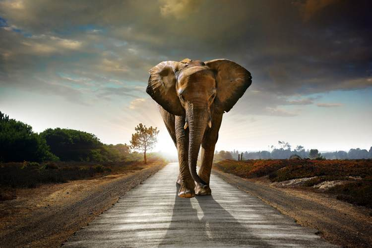 Why You Should Make The Journey Your Destination