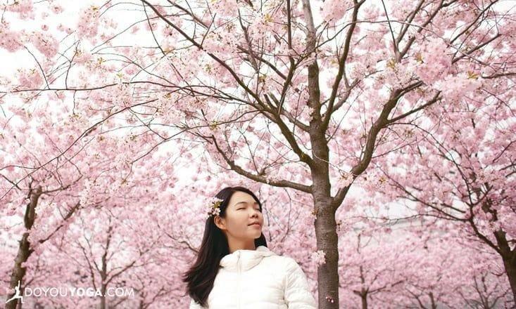 Finally Breathe Easy! 9 Natural Ways To Combat Seasonal Allergies
