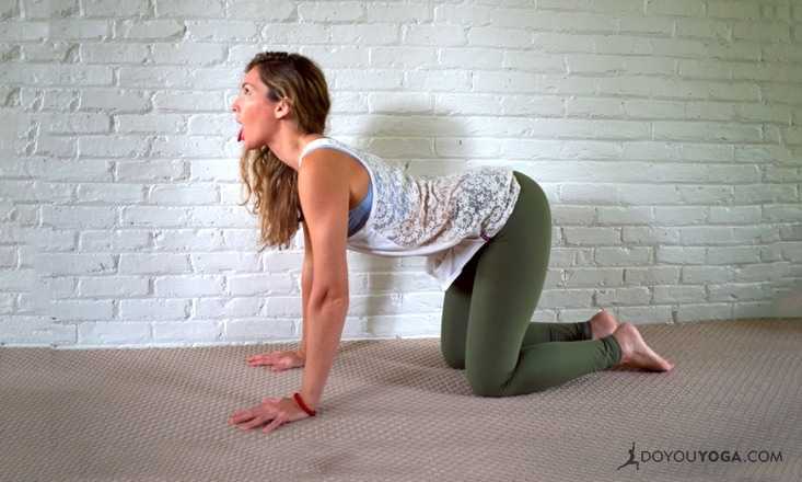 How to Do Lion Pose (Simhasana) and Its Variations