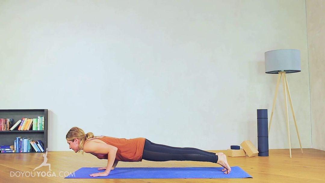 4-Limb Staff Pose / Chaturanga Dandasana