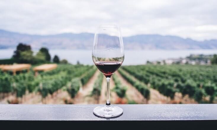Is Red Wine Really Good for Your Health?