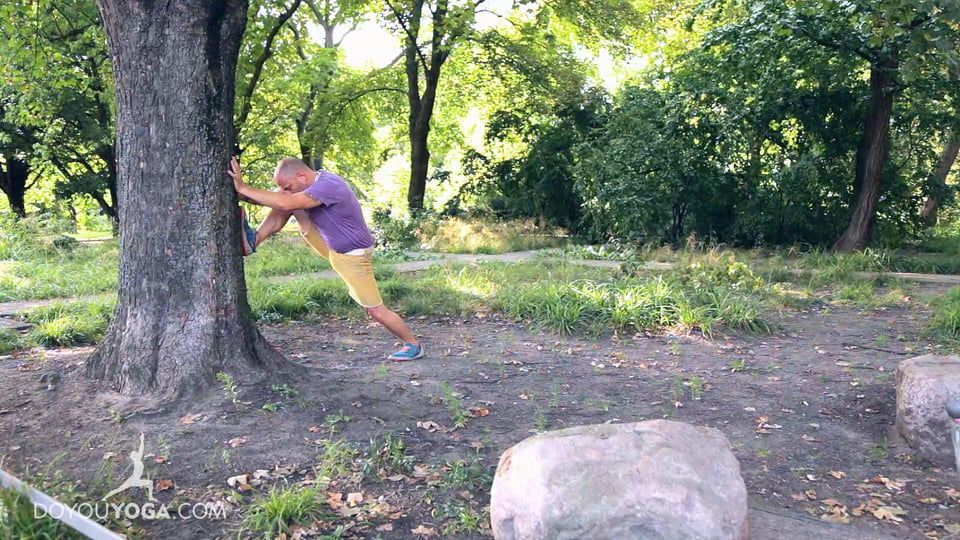Using a Tree to Stretch the Legs and Upper Body